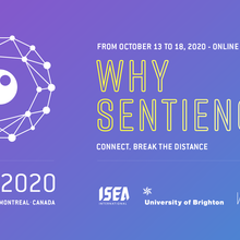 ISEA2020 Online - International Symposium on Electronic Art