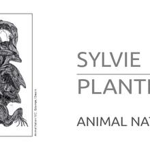"SYLVIE PLANTE : ""Animal Nation"" - estampe et dessin"