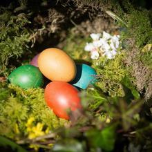 Week-end de Pâques à Québec