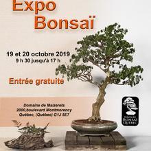 Exposition de bonsaïs