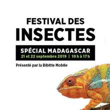 Festival des insectes
