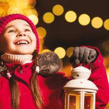 Vivez Noël dans la Jacques-Cartier