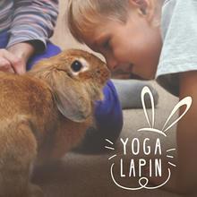 Yoga Lapin