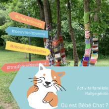 "Rallye photo ""Où est Bébé Chat ?"""
