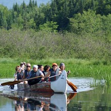 À la découverte des marais en canot rabaska