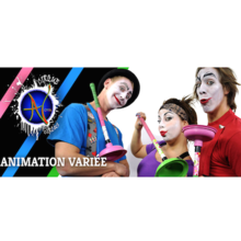 Ateliers et spectacle de cirque